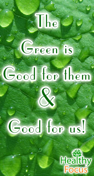 mig-the-green-is-good-for-them-good-for-us