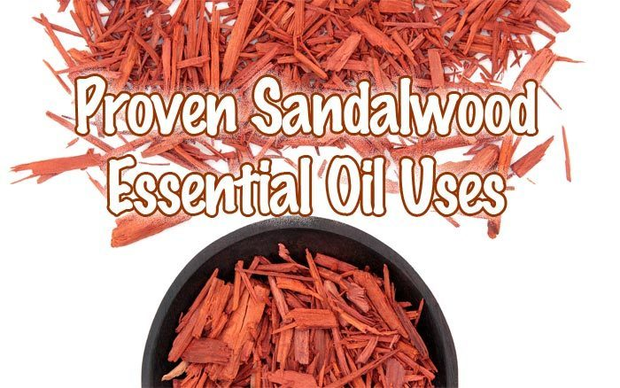 Proven Sandalwood Essential Oil Uses - Healthy Focus