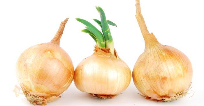 onions for boils