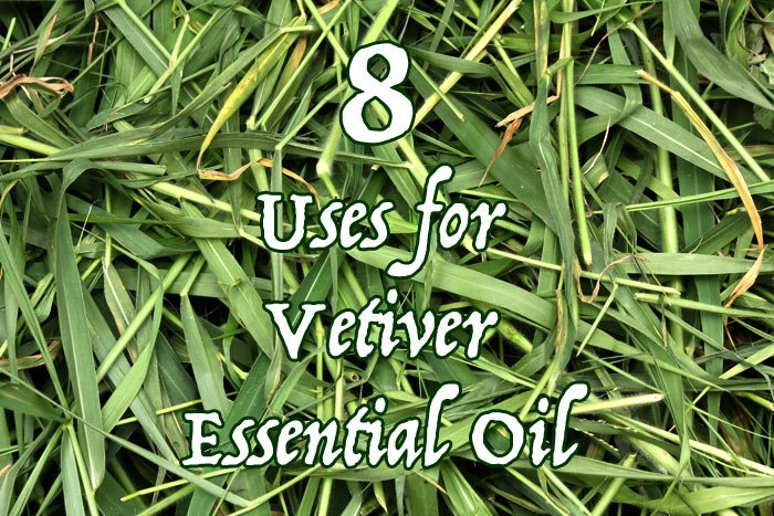 8 Uses for Vetiver Essential Oil