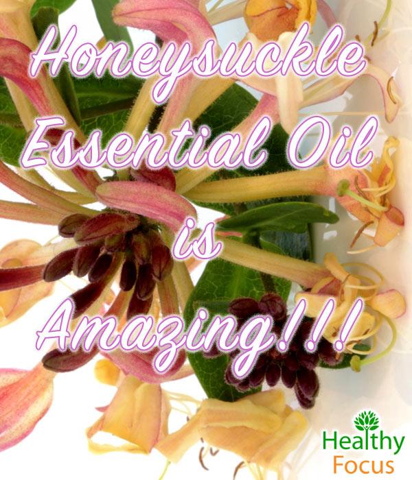 mig-Honeysuckle-Essential-Oil-is-Amazing