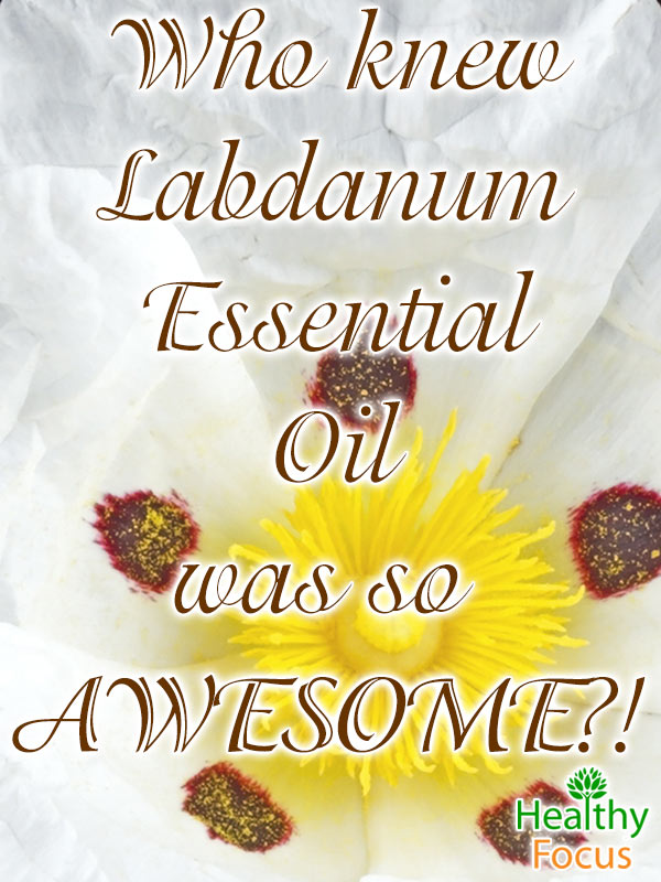 mig-Who-knew-Labdanum-Essential-Oil-was-so-AWESOME