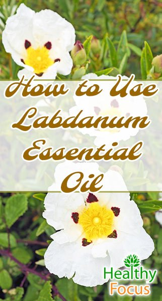 how to use mullein essential oil