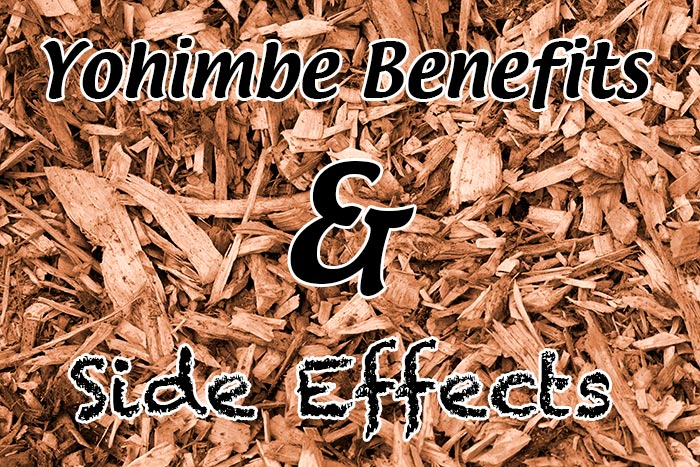 Yohimbe Benefits and Side Effects