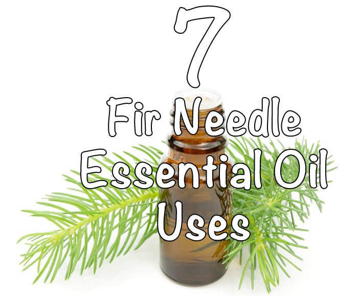 7 Fir Needle Essential Oil Uses