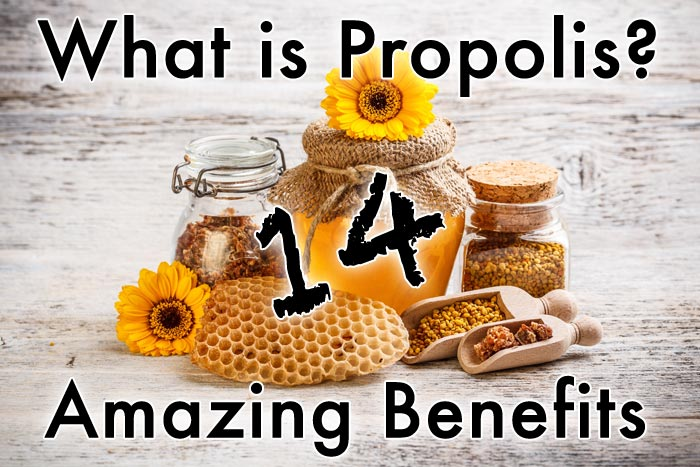 What is Propolis? 14 Amazing Benefits