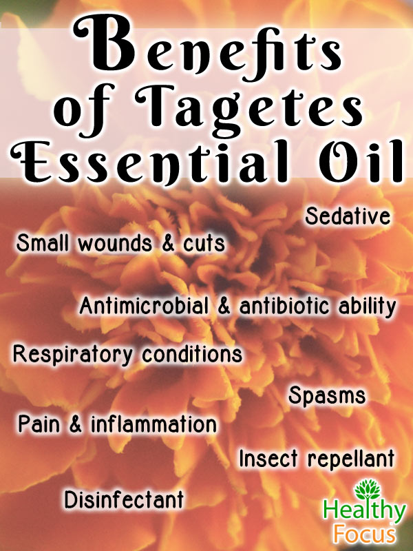 mig-8-Benefits--of-Tagetes--Essential-Oil