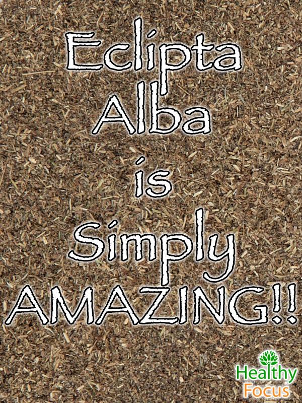 mig-Eclipta-Alba-is--Simply--AMAZING
