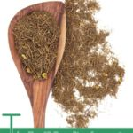 The Top 12 Benefits of Goldenseal