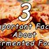 3 Important Facts About Fermented Food