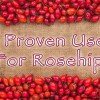 9 Proven Uses For Rosehip Essential Oil