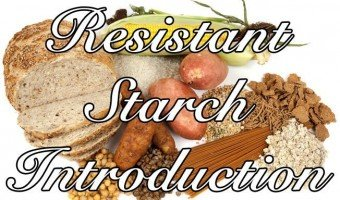 Resistant Starch Introduction