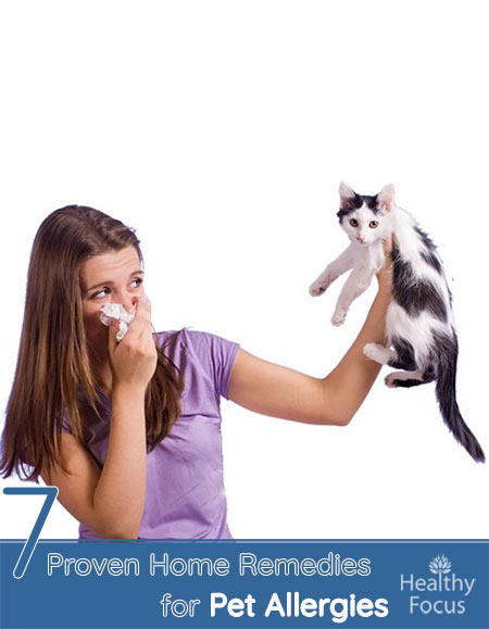 7 Proven Home Remedies for Pet Allergies