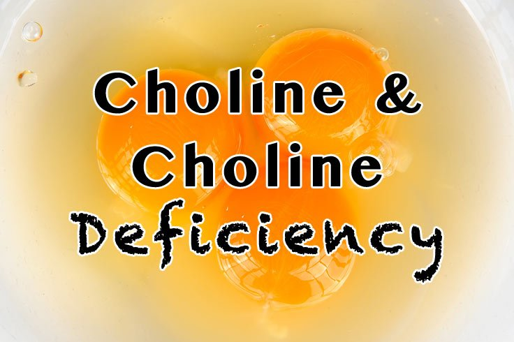 Choline and Choline Deficiency