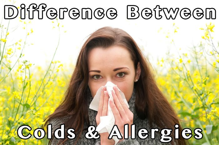 Difference Between Cold and Allergies