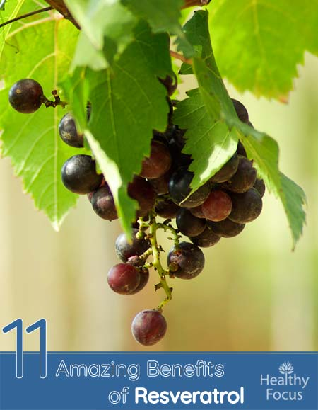 11 Amazing Benefits of Resveratrol