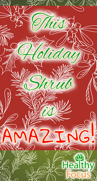 mig-this-holiday-shrub-is-amazing