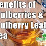 Benefits of Mulberries and Mulberry Leaf Tea