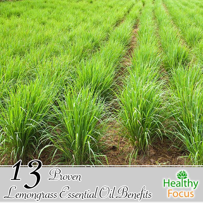 hdr-13-Proven-Lemongrass-Essential-Oil-Benefits