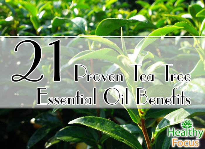 hdr-21-Proven-Tea-Tree-Essential-Oil-Benefits