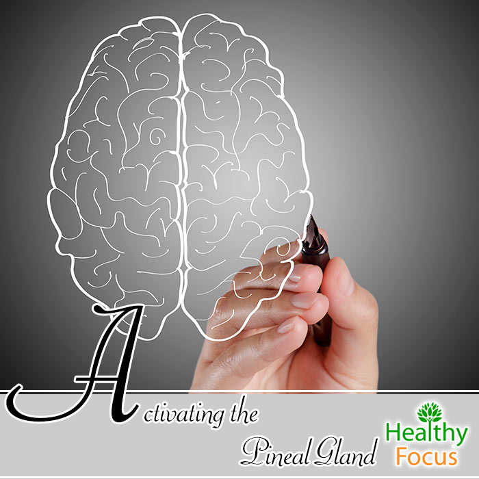 Activating The Pineal Gland Healthy Focus