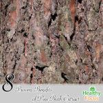 8 Proven Benefits of Pine Bark Extract
