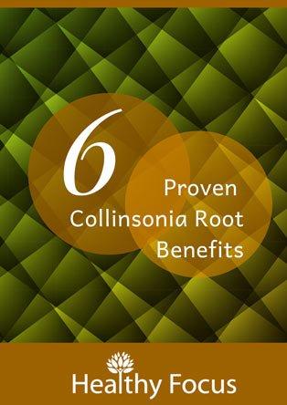 6 Proven Collinsonia Root Benefits