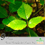 9 Proven Home Remedies for Poison Ivy