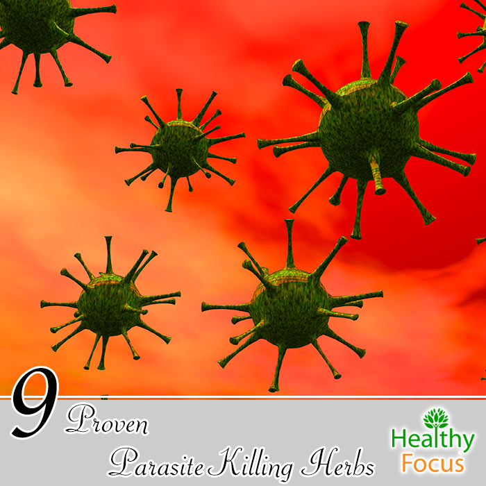 hdr-9-proven-parasite-killing-herbs
