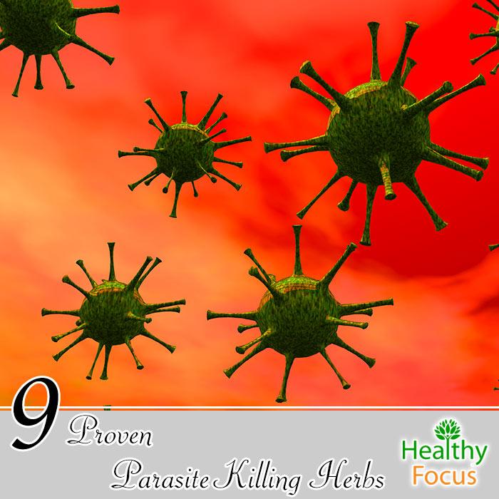 hdr-9-proven-parasite-killing-herbs