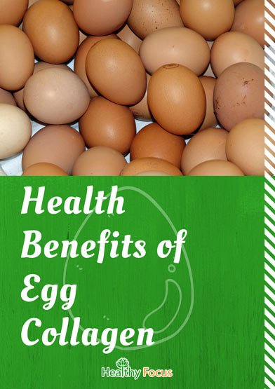 Health Benefits of Egg Collagen