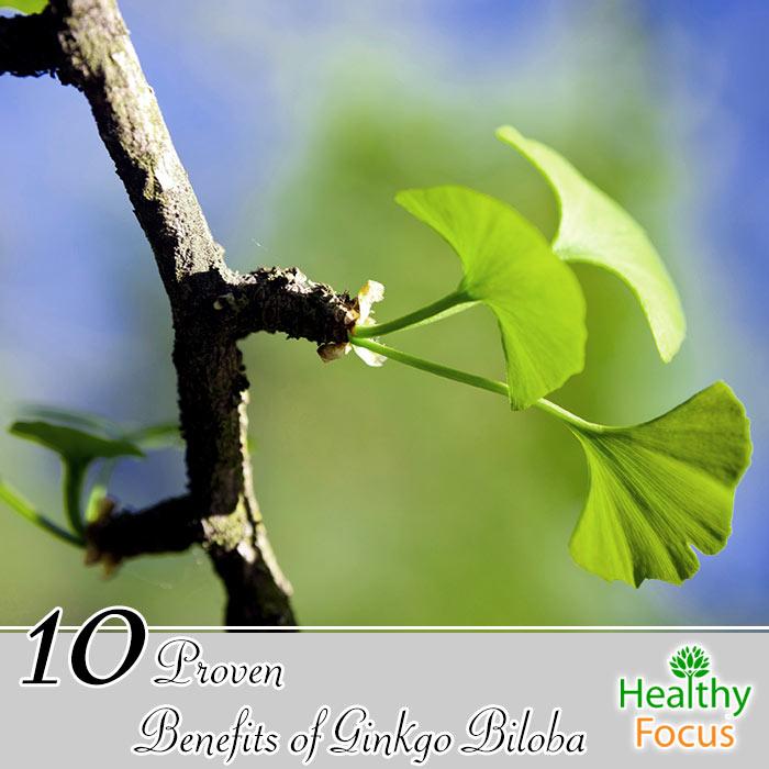 hdr-10-proven-benefits-of-ginkgo-biloba