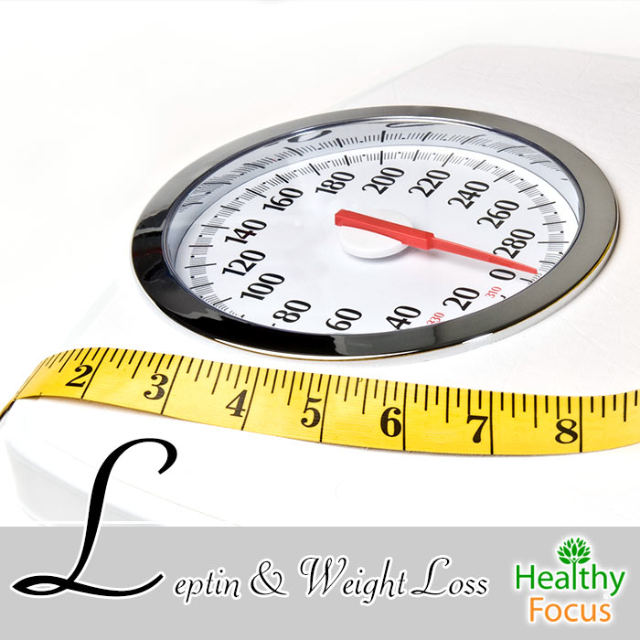 hdr-leptin-and-weight-loss
