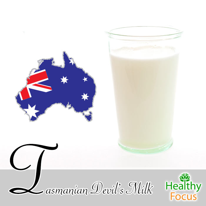 hdr-tasmanian-devils-milk