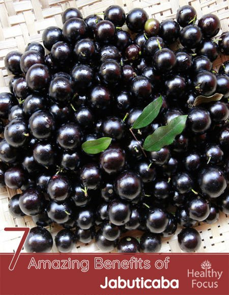 7 Amazing Benefits of Jabuticaba