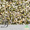 Benefits of Mung Bean Sprouts