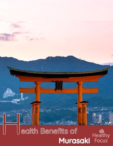 Health Benefits of Murasaki