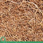 9 Science Backed Benefits of Valerian Root