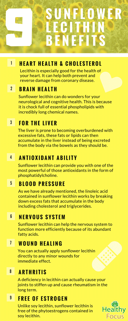 Sunflower Lecithin Benefits