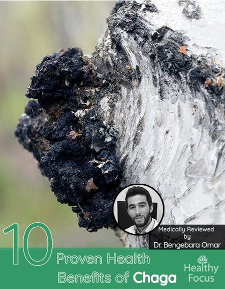 10 Proven Health Benefits of Chaga