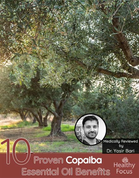 10 Proven Copaiba Essential Oil Benefits