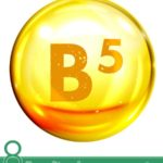 8 Benefits of Vitamin B5