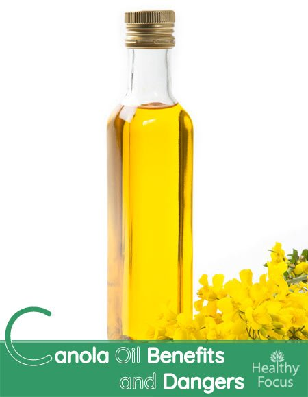 Canola Oil Benefits and Dangers