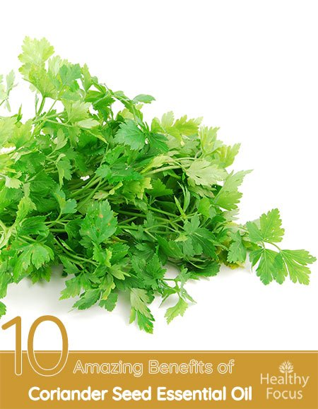 10 Amazing Benefits of Coriander Seed Essential Oil