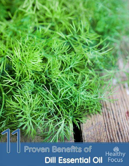11 Proven Benefits of Dill Essential Oil