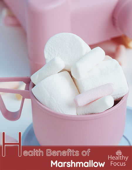 Health Benefits of Marshmallow