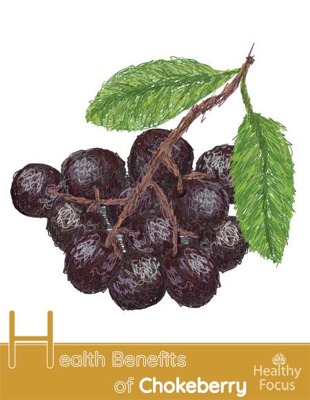 Health Benefits of Chokeberry