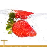 The Health Benefits of Fisetin